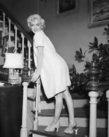 Marilyn Monroe The Seven Year Itch 8x10 Photo (MM-192)