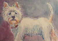 West Highland White Terrier Westie ACEO Original Watercolor RAMFish Artist