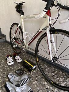 Rennrad Bergamont Dolce Team aus Carbon
