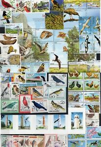 DISCOVER URUGUAY ! SELECTED 72 BIRD STAMPS MNH ALMOST COMPLETE COUNTRY