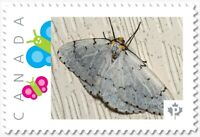 white MOTH, BUTTERFLY Custom Postage stamp MNH Canada 2018 [p18-04sn11]