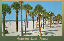 postcard   USA Florida  Clearwater Beach  unposted