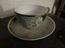 C.T. Altwasser Silesia Germany China  Tea Cup And Saucer