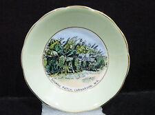 """Royal Grafton Souvenir Dish - Banana patch, Carnarvon W.A. vgc (3 7/8"""") #1 green"""