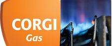 CORGI Gas Caldaia Riscaldamento & IDRAULICO GUIDE MANUALI DI SERVIZIO SU DISCO DVD per PC