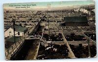 1913 Cattle Division Union Stock Yards South Omaha Nebraska Vintage Postcard A85
