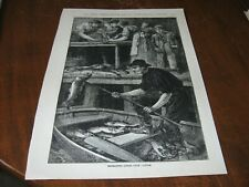 1886 Art Print ENGRAVING - Extracting LIVERS from CODFISH OIL Fish Fishing Cod