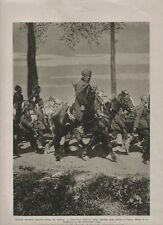 1916 WWI Photo print. French Algerian troops escort German prisoners.