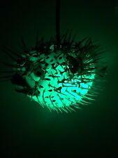 "NEW 6""-7"" Puffer Fish Lamp w/color changing LED Tiki bar Smokin Tikis fx 31618"