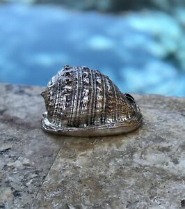 Lisi Fratelli Sterling Silver Covered Sea Shell Art Vintage