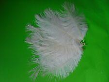 lot de 5 plumes autruche blanche 15 et 20 cm