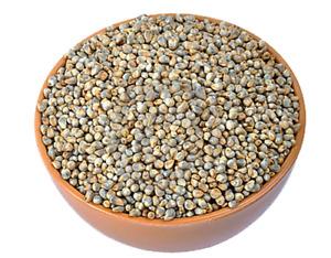 Natural Bajra Grain Kambu Pearl Millet Whole Grain Freshly