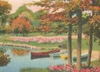 Vintage Postcard Linen Greetings from McRae Georgia GA Pond Park Boats