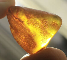 Raw Genuine Natural Baltic Amber Stone Honey 5,9 Gr.