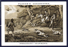 Player's OLD SPORTING PRINTS - Pheasant Hawking, No.18