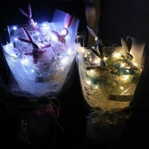 LED DIY USB Micro Copper Wire String Lights Party Fairy Light String Lamp🔥Decor