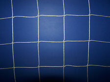 "100' x 11'  WHITE SQUARE MESH NYLON SOCCER NETTING  4""  #36 TWINE TEST 350 LBS"