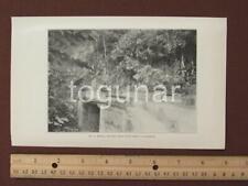 1899 Puerto Rico Photogravure Print, Military Road from Ponce to Adjuntas Bridge