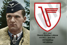 aviation art pilot postcard colour WW2 Gunther Lutzow Luftwaffe JG 3 JV 44 photo