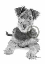 AIREDALE TERRIER PUPPY pencil drawing art print A4 only signed artwork dog