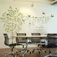Tree Photo Frame Bird Removable Vinyl Art Wall Sticker Decal Mural Home Decor