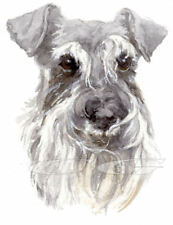 SCHNAUZER.         3 Blank Dog greeting cards by Christine Groves