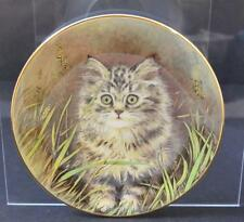 """Vintage Royal Worcester Wild Flower Kitten Made England Wall Decor Plate 8"""" Gy7"""