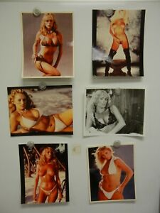 Lot of 6 Sybil Danning Photos 8x10  MINT