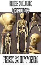 """1 Miniature Dollhouse LIFE LIKE BONES Human Skeleton 6"""" 1/12 Figure Halloween"""