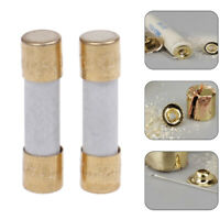 1x Hifi silver alloy fuse gold cap 5x20mm 1A 2A 3A 4A 5A 6A3 slow blow