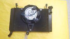 Yamaha YZF 600 2007 Radiator & Fan