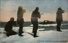 Eskimos Hunting Walrus in Alaska AK c1910 Postcard