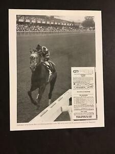 SPECTACULAR BID photo  Horse Racing WALKOVER
