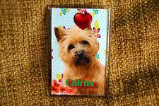 Cairn Terrier Gift Dog Fridge Magnet 77x51mm UK Seller