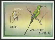 Ghana Oiseaux Souimanga Sunbird Birds Vogel Aves Non Dentele Imperforate ** 1997