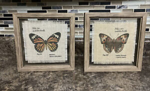 "2-7x7"" Framed Butterfly Wall Pictures 1- Monarch 1-Common Buckeye"