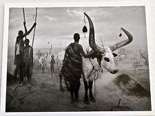 Sebastiao  Salgado Print 7 Closeup of Indigenous People with  Herd 13x10
