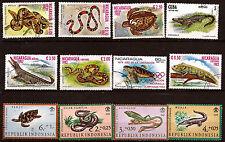 Rettili del tutti i paesi : coccodrilli,tartarughe,serpenti,iguana 43T6