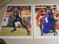 (2) 8 x 10 photos of former TCU & current Bengals Quarterback Andy Dalton