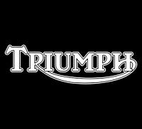 2 x WHITE - TRIUMPH - Motorbike Tank Decal Stickers