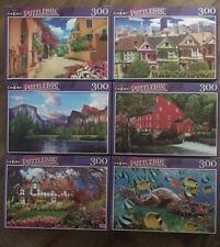6-New 300 Piece Jigsaw Puzzle Puzzlebug