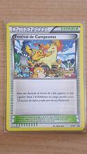 Pokemon card champions festival XY91 (spanish)
