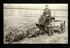 Animal postcard pig Cottonwood Pigs cart Modern Reproduction Card
