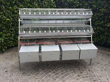 Gabbia conigliera 3 piani 4 fattrici per conigli - IN ITALIA