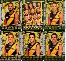 2012 AFL Teamcoach Silver Team set Richmond (12)