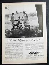 1956 MoorMans Feed Photo Ad Endorsed Mrs Milton Stout of Bremer County, Iowa