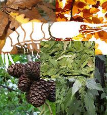 garnelen-set-200: RUBINETTO Ontano,foglie fogliame quercia,faggio,ORTICA,SPINACI