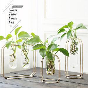Metal Stand Glass Flower Vase Hydroponic Plant Pot Terrarium Bonsai Container AU