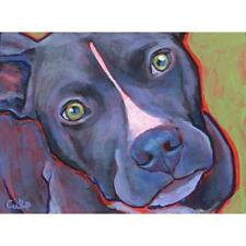 Black and White Pit Bull Print 8x10 by Lynn Culp (LC002P13) - Free Shipping