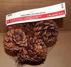 Pinecones Ashland Christmas Cinnamon Scented Smell 3 Dry Quarts Bag USA 149Y
